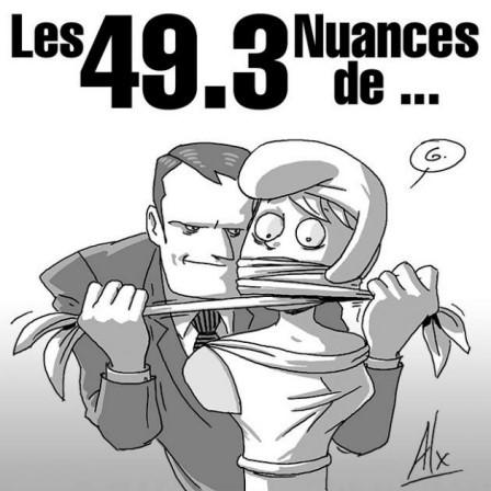 49.3, nuances de crises